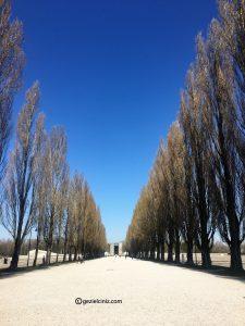 Dachau yol